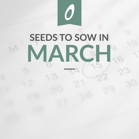 March Sowing