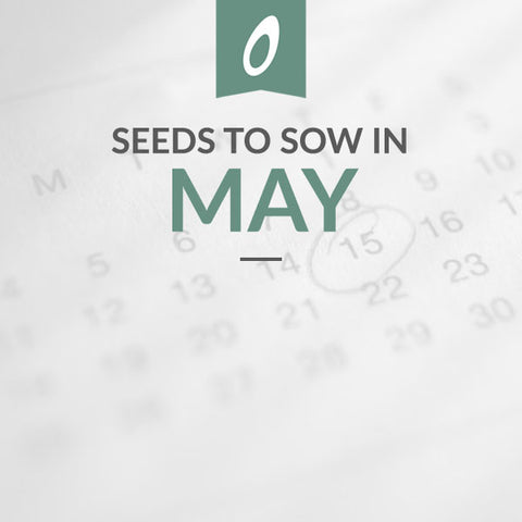 May Sowing