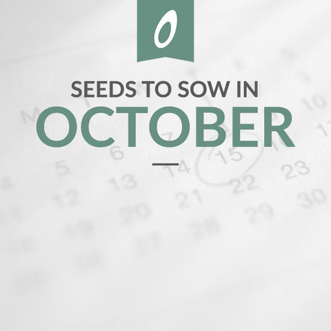 October Sowing