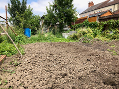 bare soil allotment
