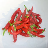 Basket of Fire F1 Chilli Seeds