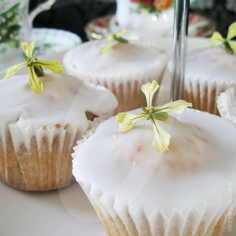 Fairy Cakes & Rocket Flowers