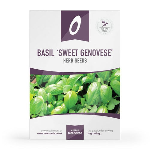 Details about  /Basil Sweet Genovase Heirloom Garden Herb By Seed Kingdom 1,200 Seeds