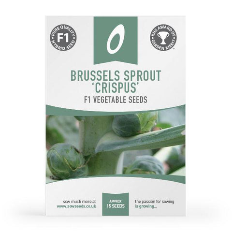 Brussels Sprout Crispus F1 Seeds (AGM)