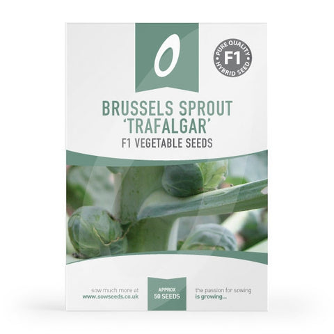Brussels Sprout Trafalgar F1 Seed Packet