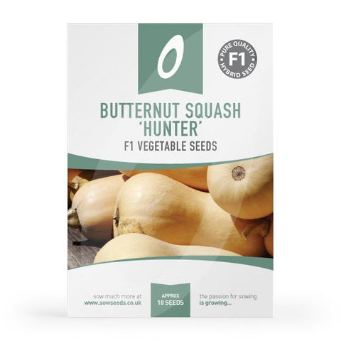 Butternut Squash Hunter F1 Seeds