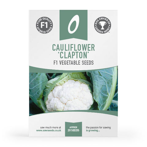 cauliflower clapton f1 vegetable seed agm