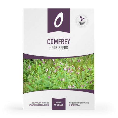 Comfrey Herb Seeds