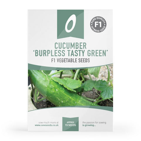 Cucumber Burpless Tasty Green Seeds