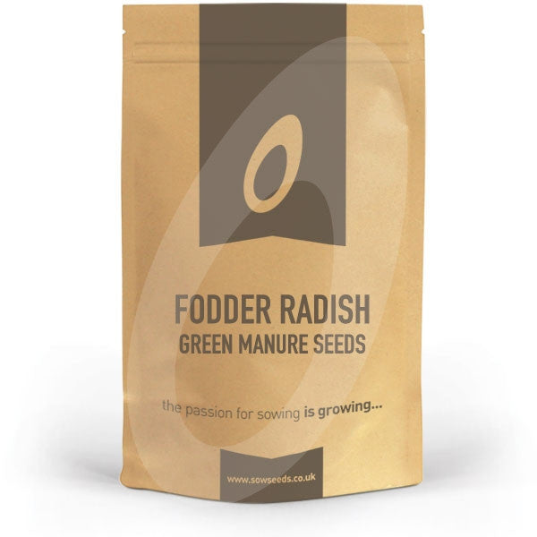 Fodder Radish Green Manure Seeds