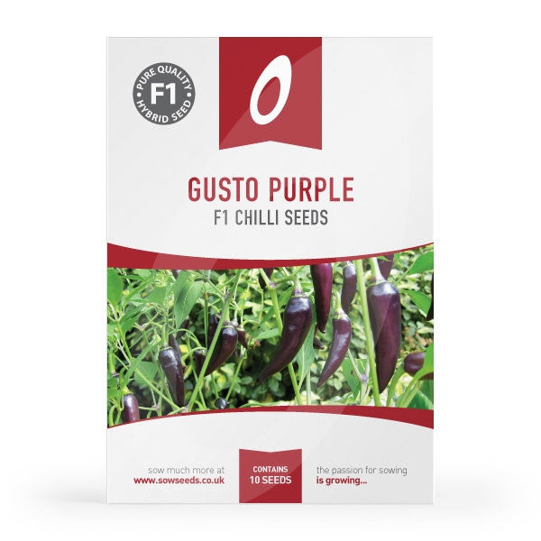 Gusto Purple F1 Chilli Seeds