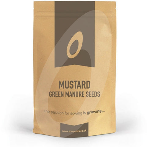 Mustard Green Manure Seeds
