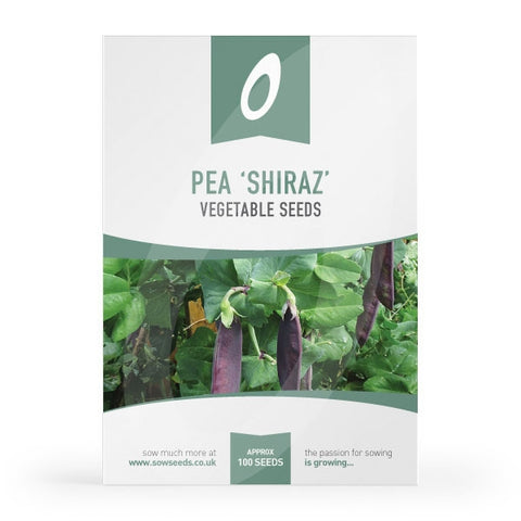 Pea Shiraz Seeds