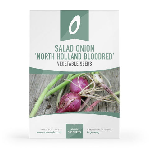 Salad Onion North Holland Bloodred Redmate Seeds