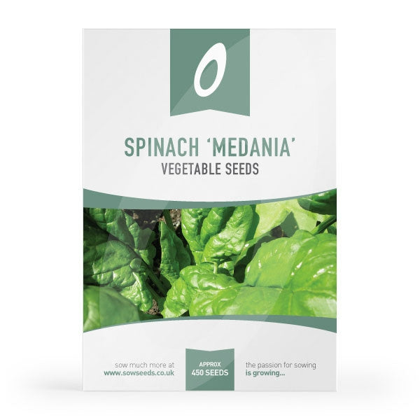 Spinach Medania Seeds