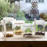 sprouting seed jars rekha garden kitchen