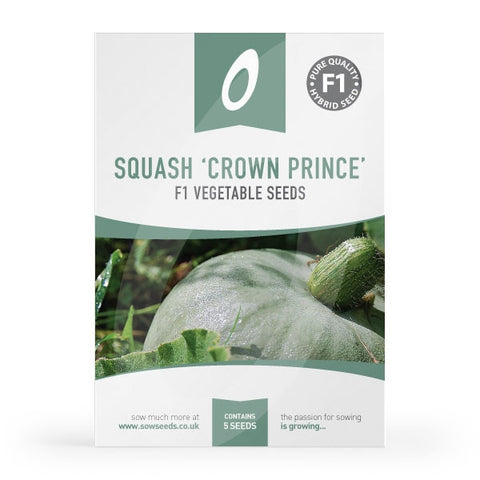 Squash Crown Prince Seeds