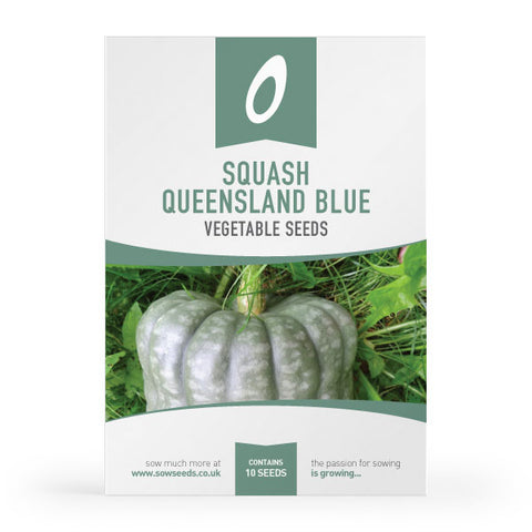 Squash Queensland Blue Seeds