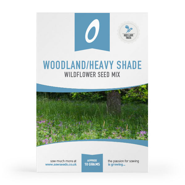 woodland heavy shade wildflower meadow seed mix