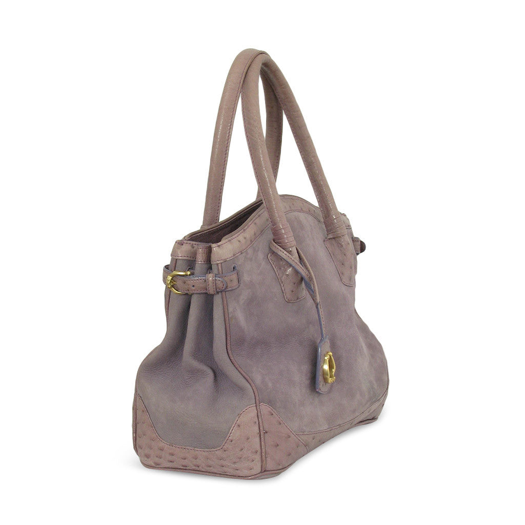 Cece Ostrich and suede tote