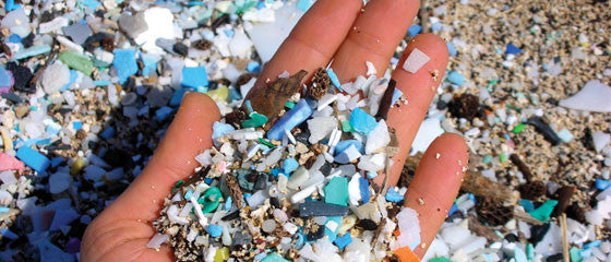 How plastic beads are causing big problems