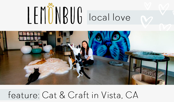 Local Feature: Cat & Craft Cafe