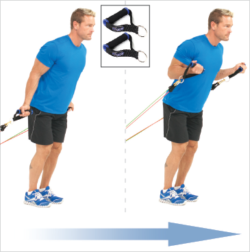 Standing Biceps Curls (Anchor)