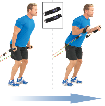 Standing Biceps Hammer Curls (Anchor)