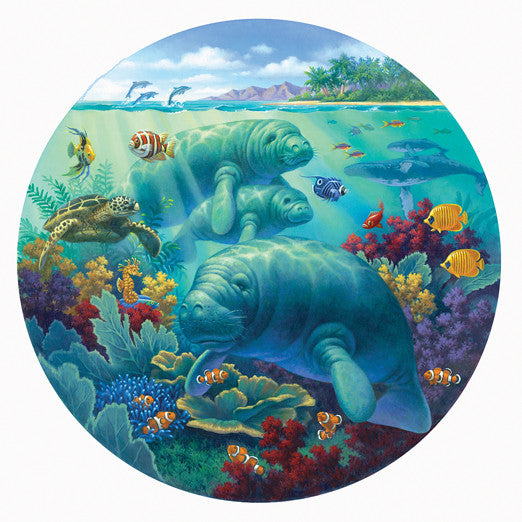 Manatee Beach Jigsaw Puzzle 500 Oval Shaped Corbert Gauthier - Mr Puzzle Head
