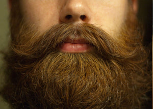 beard blog articles