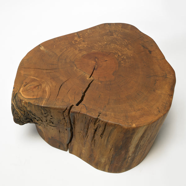Arbutus stump table (#1)