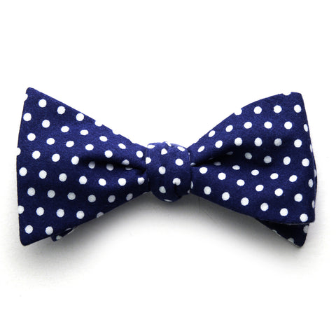 Alfred - Polka Dot Bow Tie (Blue/Gray)