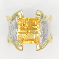 14K Gold & Crystalline Silver Citrine Ring - 35901-Fusion Designs-Renee Taylor Gallery