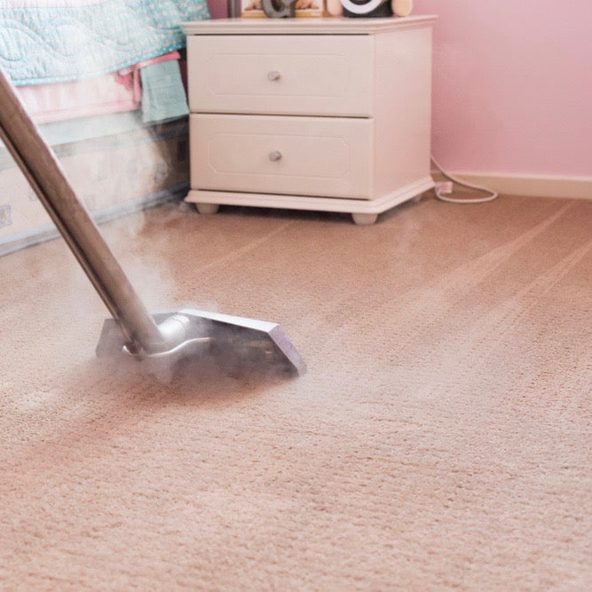 Steam cleaning carpets to remove dust mites: does it prevent eczema?
