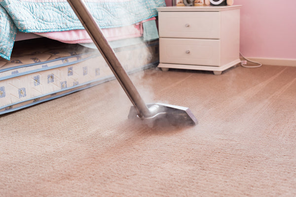 Carpet steam cleaning for eczema and dust mites