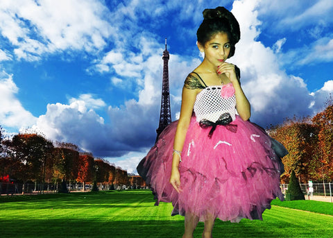 Beautiful Paris Themed Tutu