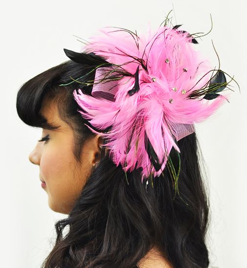 Hair Accessory Muriel Feather Brooch and Hair clip