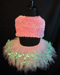 Mint Ribbon and Pink Tutu