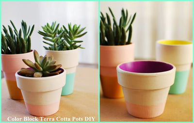 DIY: Color Block Terra Cotta Pots DIY