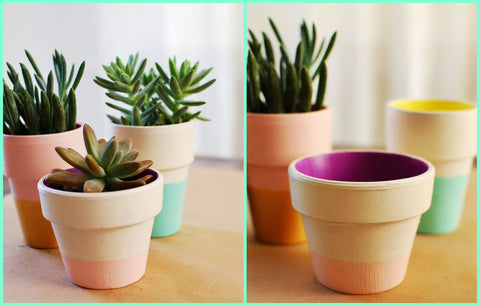 Photos of Color Block Terra Cotta Pots DIY