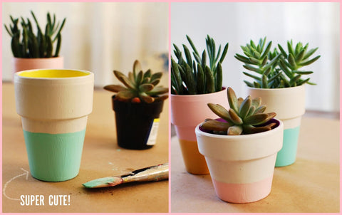 Finished Work of Color Block Terra Cotta Pots DIY