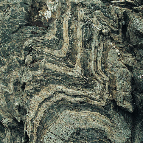 Folded slates, Loe Pool, West Cornwall