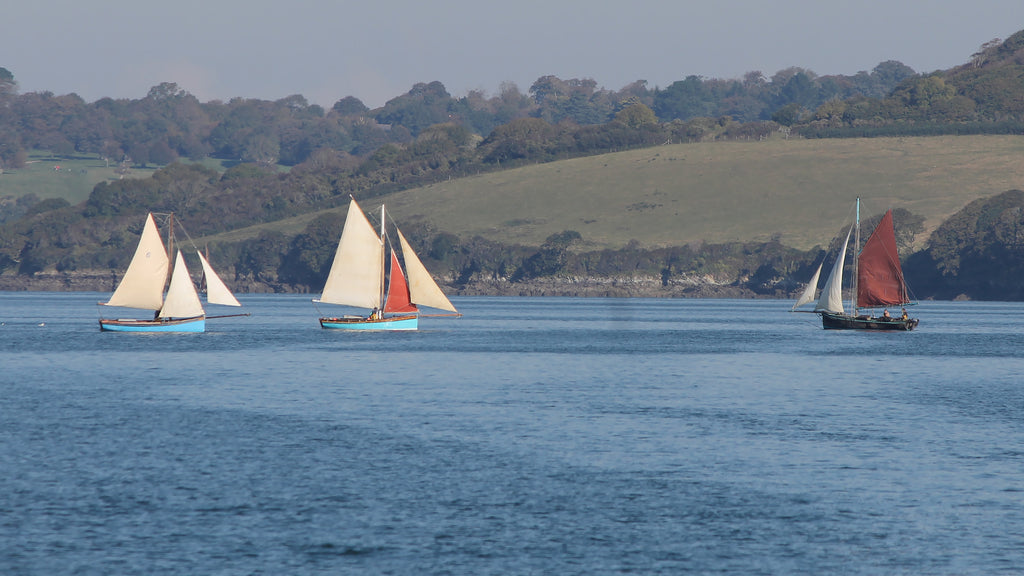 Oyster boats on Carrick Roads