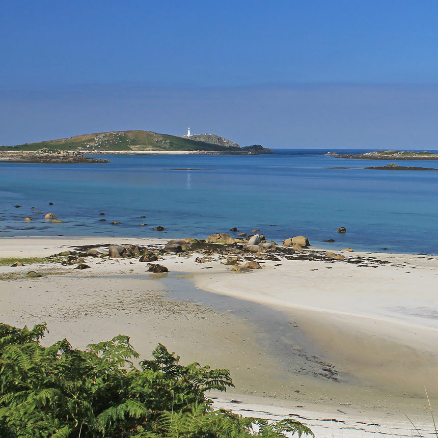Friendly Guides Scilly Pocket Map 4: Tresco Tean and St Helen's, cover photo of Tresco Abbey Gardens