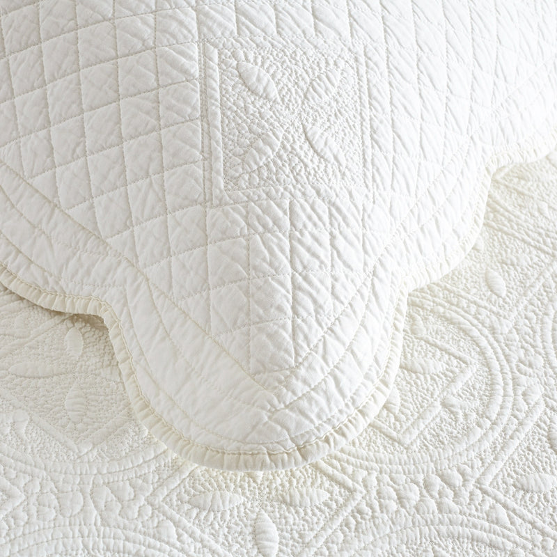 Sage Garden Luxury Pure Cotton Quilted Ivory Pillow Sham - Calla Angel  - 3