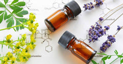 What are Essential Oils and how do they work