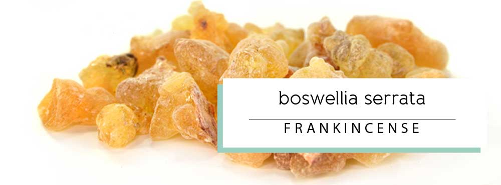Learn more about Frankincense Essential Oil