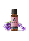 Lavender: Maillette Essential Oil