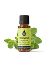 Origanum True (Oregano) Essential Oil