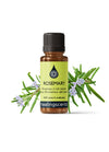 Rosemary ct 1,8 cineole Essential Oil